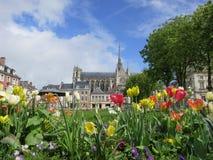 Amiens domkyrka, Frankrike Arkivfoto