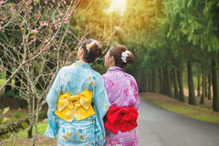 Amies asiatiques regardant les fleurs roses Images stock