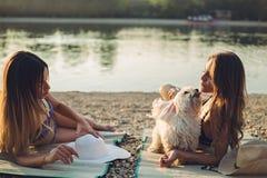 Amies avec le chien se trouvant sur la plage et parler Photo stock