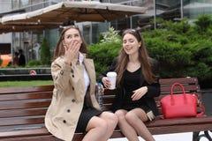 Amies ayant l'amusement sur le banc dehors Photos stock