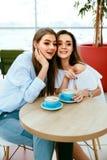 Amies buvant du café en café Images stock