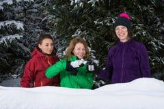 Amies célébrant dans la neige Images libres de droits