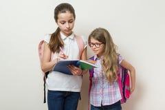 Amies d'écoliers La fille plus âgée montre le carnet plus jeune photos stock