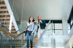 Amies dans l'université sur des escaliers Photographie stock libre de droits