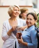 Amies de femme sur la terrasse d'été Image libre de droits