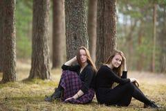 Amies de filles s'asseyant ensemble dans une nature de forêt de pin Image stock