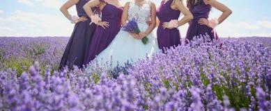 Amies de la jeune mariée et de jeune mariée dans le domaine de la lavande Images libres de droits