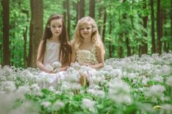 Amies de princesses Photographie stock