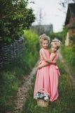 Amies du portrait des enfants dans une robe rose dans le jardin 661 Photo stock
