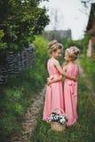 Amies du portrait des enfants dans une robe rose dans le jardin 661 Photos stock