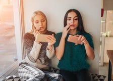 Amies faisant ensemble le maquillage Images libres de droits