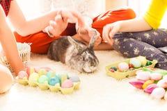 Amies jouant avec le lapin Photo libre de droits