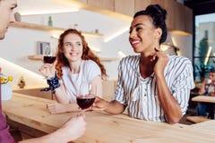Amies multi-ethniques buvant du vin Images stock