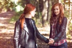 Amies rousses dans la forêt Photographie stock