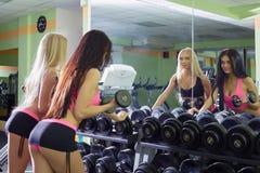 Amies sexy choisissant des haltères pour la formation Photo libre de droits