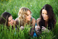 Amies sur l'herbe Photo stock