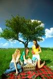 Amies sur le pique-nique Photo libre de droits