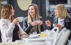 Amigas que beben el café Imagen de archivo libre de regalías
