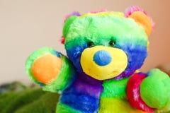 Amigo colorido Misha Foto de Stock Royalty Free