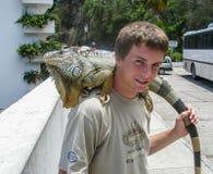 Amigo da iguana Fotografia de Stock Royalty Free