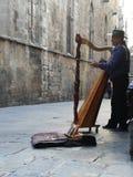 Amigo het plaing op een harp Stock Foto