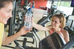 Amigo que da el agua al amigo femenino en gimnasio Fotografía de archivo libre de regalías