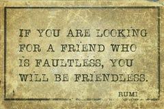 Amigo Rumi del hallazgo Fotografía de archivo libre de regalías