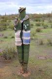 Amigo's van de Woestijn Stock Afbeeldingen