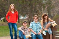 Amigos adolescentes que se divierten en el parque Foto de archivo libre de regalías