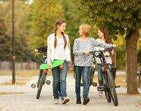 Amigos alegres con las bicicletas Fotos de archivo