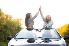 Amigos alegres na viagem por estrada fotografia de stock royalty free