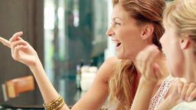 Amigos bastante rubios felices que discuten en cafetería almacen de metraje de vídeo