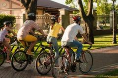 Amigos biking en el parque, visión trasera imagen de archivo libre de regalías