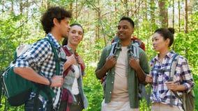Amigos con las mochilas en alza que hablan en bosque metrajes