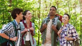Amigos con las mochilas en alza que hablan en bosque almacen de metraje de vídeo