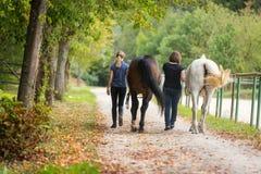 Amigos con sus caballos Imagen de archivo