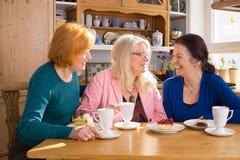 Amigos da fêmea adulta que comem petiscos na tabela Fotografia de Stock