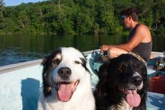 Amigos da pesca Imagem de Stock Royalty Free