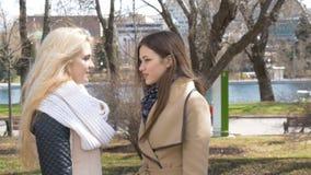 Amigos da reunião no parque Louro de duas meninas e suporte moreno e conversa Um homem novo aproxima-os Eles alegremente filme