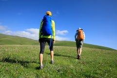 Amigos das mulheres que caminham em montanhas da pastagem Imagens de Stock