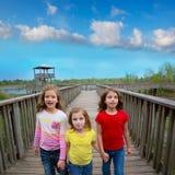 Amigos de la hermana que caminan llevando a cabo las manos en la madera del lago Imagen de archivo libre de regalías