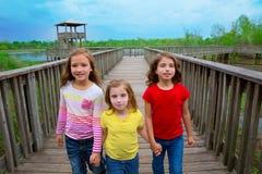 Amigos de la hermana que caminan llevando a cabo las manos en la madera del lago Imagenes de archivo