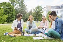 Amigos de la universidad que estudian junto en hierba Fotos de archivo libres de regalías