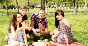 Amigos de la universidad que tienen una comida campestre en el parque Fotografía de archivo libre de regalías