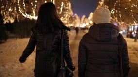 Amigos de muchachas de la vista posterior que caminan a lo largo del callejón de la noche adornado por la guirnalda almacen de video