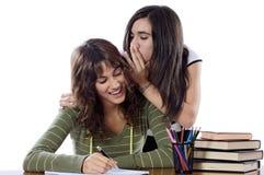 Amigos de muchachas que susurran mientras que estudia Imagen de archivo libre de regalías
