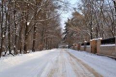 Amigos de passeio da aleia do inverno imagens de stock royalty free