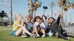 Amigos de riso que tomam o selfie no prado video estoque