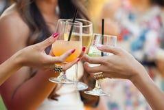 Amigos de señoras jovenes que tuestan bebidas Fotos de archivo libres de regalías
