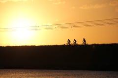 Amigos deportivos de la compañía en las bicicletas al aire libre contra puesta del sol foto de archivo libre de regalías